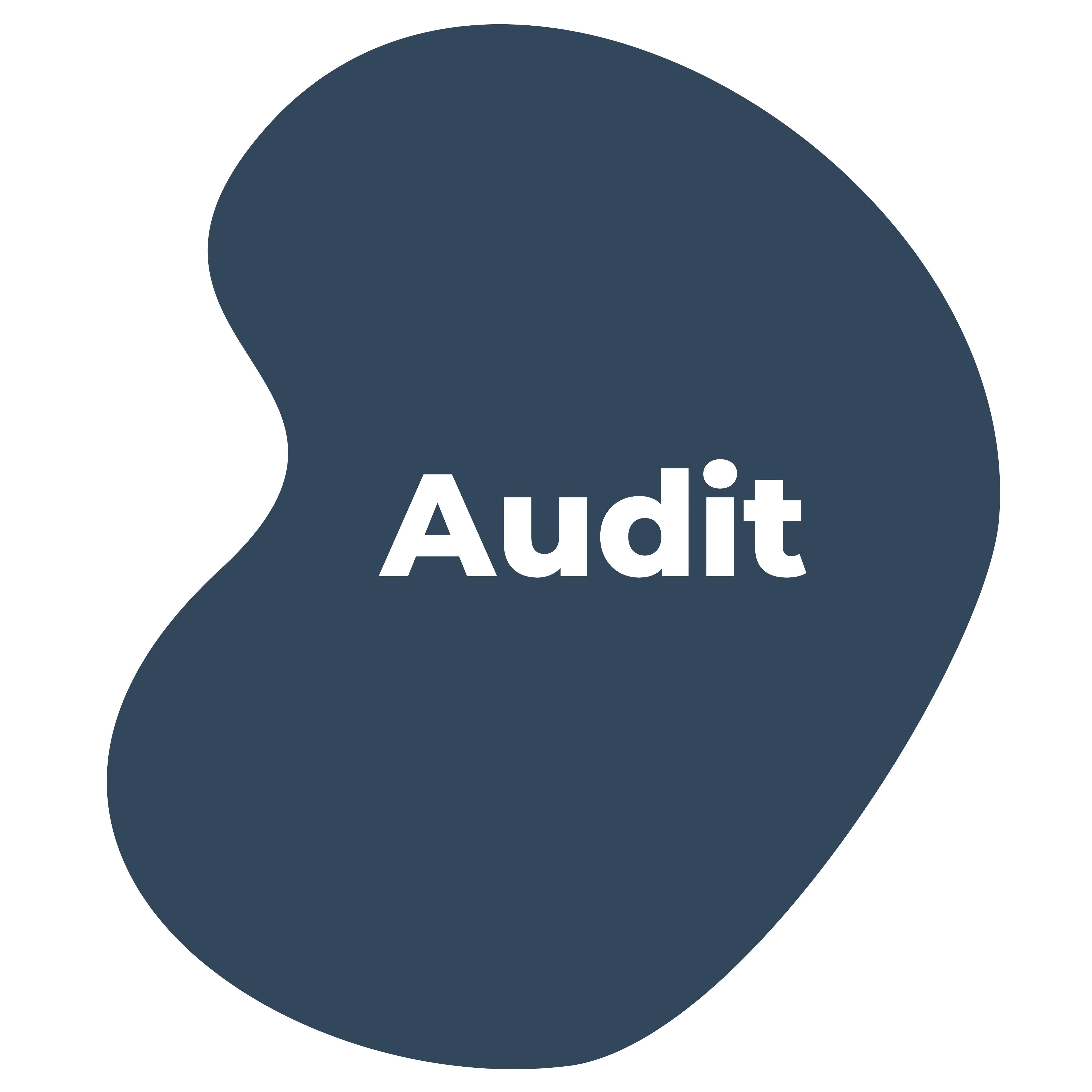 Audit (6)